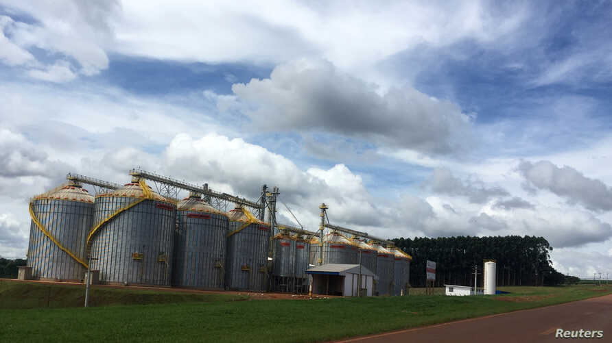 Brazil's Holambra farmer cooperative is seen, where expansion of grains storage capacity led to scrap a contract with a sugar mill for cane planting in Itajai, Sao Paulo state, Brazil, April 1, 2018.
