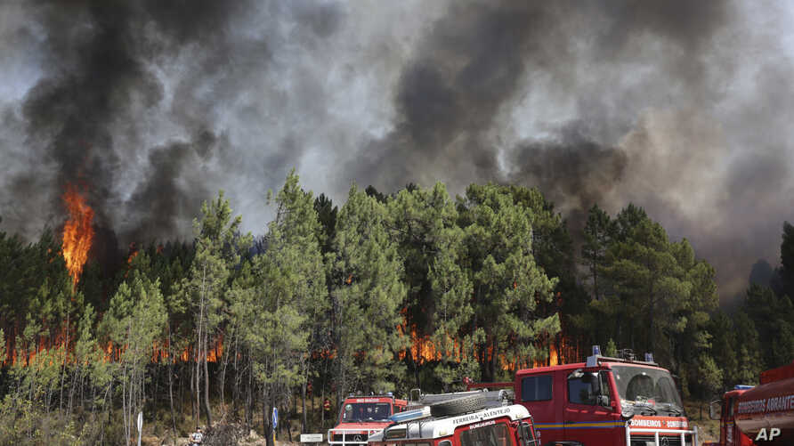 Firefighters position themselves to battle a forest fire raging by the village of Lercas near Sardoal, central Portugal, Aug. 17, 2017.
