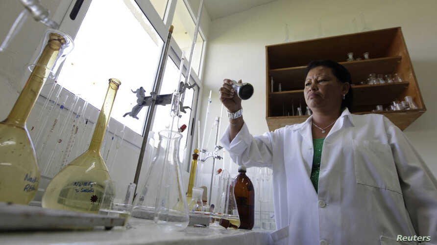 FILE - A technician works in the processing of spirulina at Labiofam Laboratories in Jaruco, outside Havana, Cuba, Sept. 6, 2011.