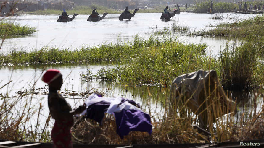 Nigerians fleeing Boko Haram attacks continue to enter Chad; men on camels cross the water as a woman washes clothes in Lake Chad at Ngouboua, Jan. 19, 2015.