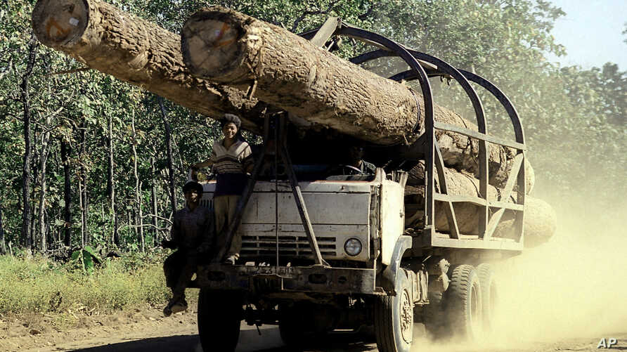 FILE - A truck carries logs in Preah Vihear province, 245 kilometers north of Phnom Penh, Cambodia. In January, Virgin Atlantic announced it was pulling out of Cambodia's first REDD+ project in Oddar Meanchey province following the release of an NGO'...