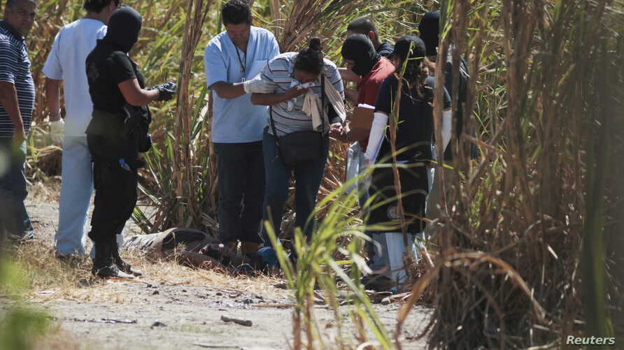 A woman identifies the bodies of her relatives, a father and son, as police investigators and forensic technicians process the crime scene, in San Luis Talpa, El Salvador, Feb. 26, 2016.