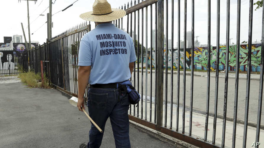 An inspector with the Miami-Dade County mosquito control department, looks for standing water as he inspects an empty lot, Aug. 2, 2016, in the Wynwood neighborhood of Miami, Florida.