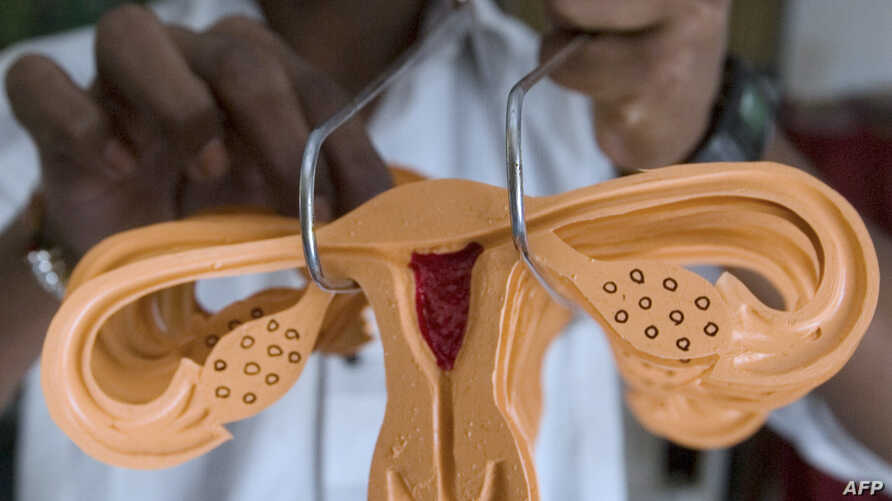 FILE - A life size rubber model of a uterus to be used as a health educational tool at a workshop in Sanand some 40 kms. from Ahmedabad on Nov. 6, 2008.