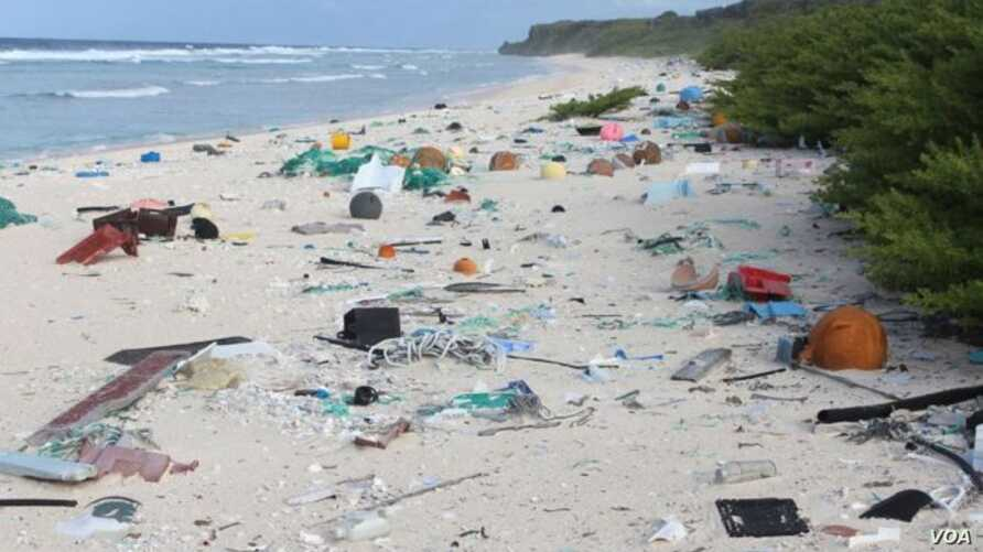 Researchers at the University of Tasmania say remote and uninhabited Henderson Island has the worst amount of plastic pollution in the world. (U. of Tasmania)