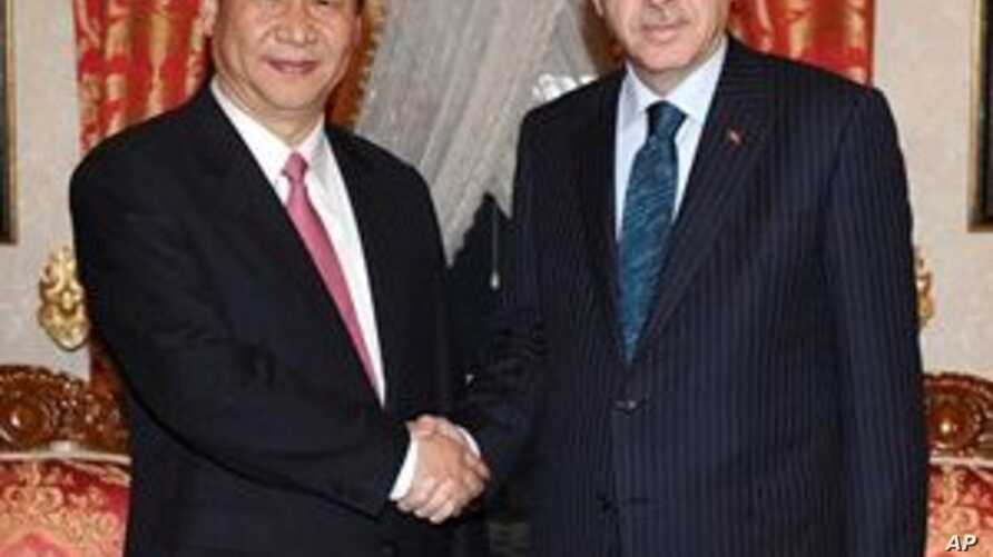 Syria and Trade Top Agenda for Chinese VP in Turkey