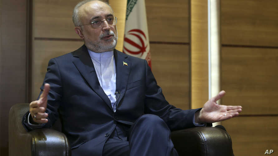 Iran's nuclear chief Ali Akbar Salehi speaks in an interview with The Associated Press at the headquarters of Iran's atomic energy agency, in Tehran, Iran, Sept. 11, 2018.