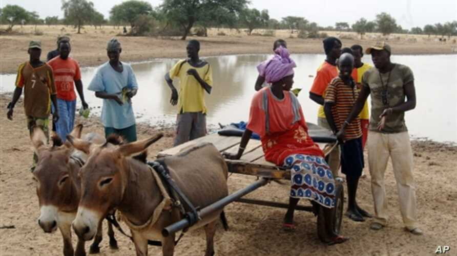 Villagers gather in front of a dam near the village of Labgar in northern Senegal on 12 Nov 2009. There is little to show for it apart from small acacia shrubs, but Senegal's leader believes in a Great Green Wall that will stem desertification across