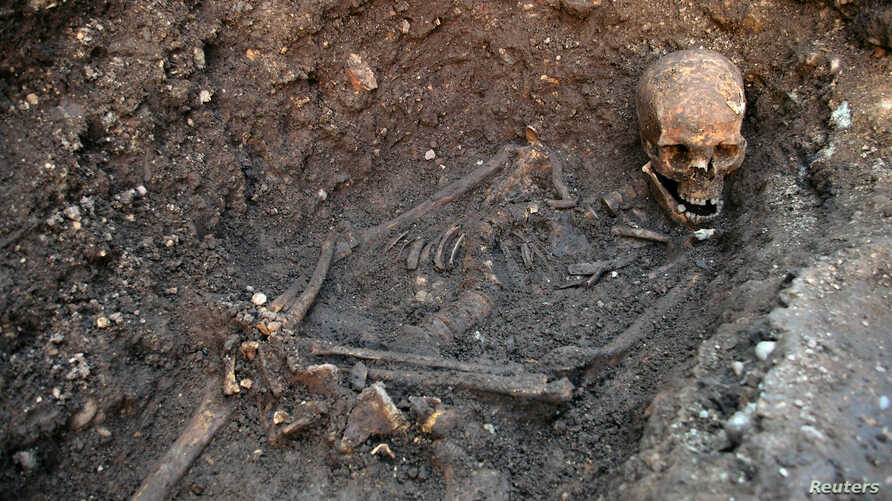 The skeleton of Richard III is seen in a trench at the Grey Friars excavation site in Leicester, central England, London, (File photo).