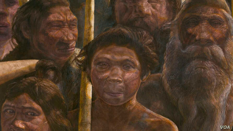 The Sima de los Huesos hominins lived approximately 400,000 years ago during the Middle Pleistocene. (Kennis & Kennis, Madrid Scientific Films)