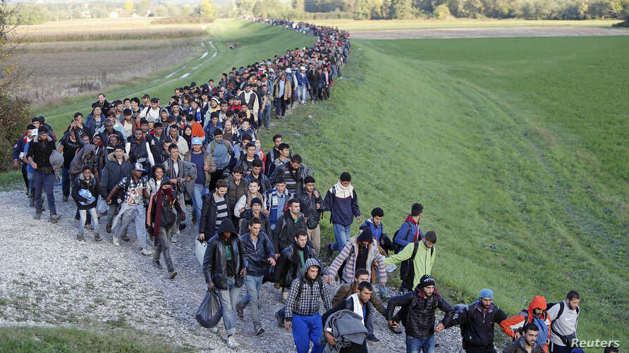 Migrants make their way on foot along the outskirts of Brezice, Slovenia, Oct. 20, 2015.