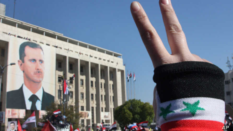 A pro-Syrian regime protester flashes V-victory sign during a protest against the Arab League sanctions, in Damascus, Syria, Nov. 28, 2011.
