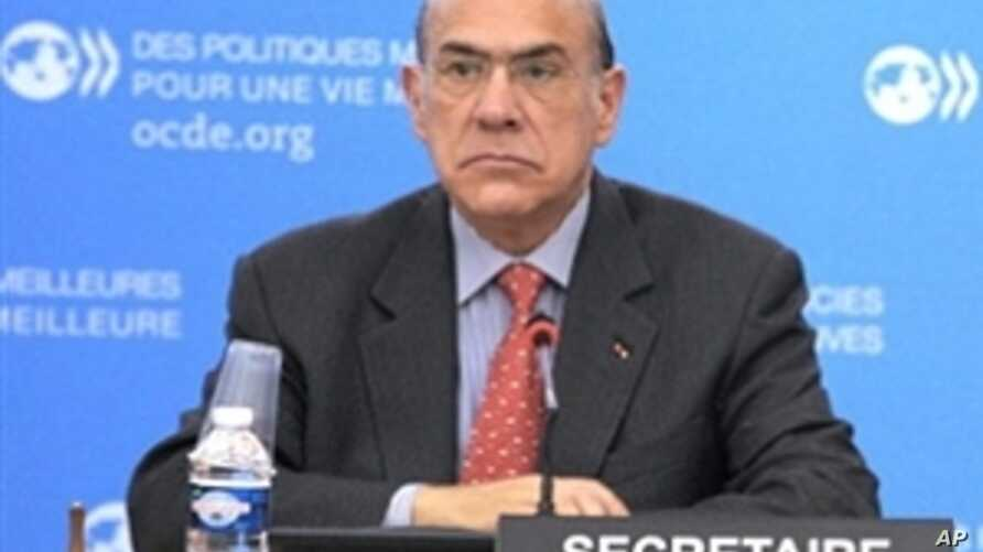 OECD Predicts Less Global Economic Growth in 2011