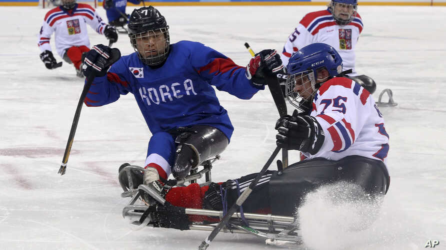 Czech Republic's Jiri Raul keeps the puck from South Korea's Choi Kwang Hyouk during a preliminary Ice Hockey match of the 2018 Winter Paralympics held in Guangneung, South Korea, March 11, 2018.