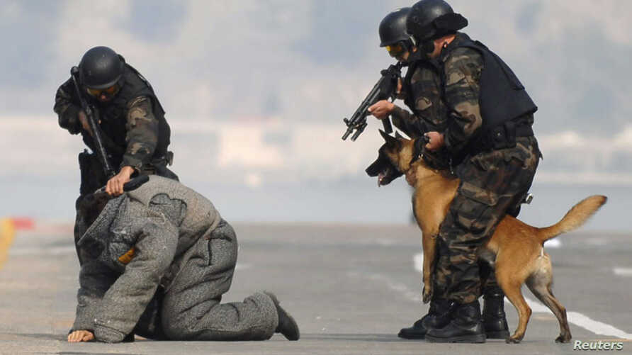 """Members of the Turkish police special unit handle a trained dog as they """"arrest"""" a man during an anti-terror drill as part of a security exercise at the Izmir port in the Aegean port city of Izmir, western Turkey, (File photo)."""