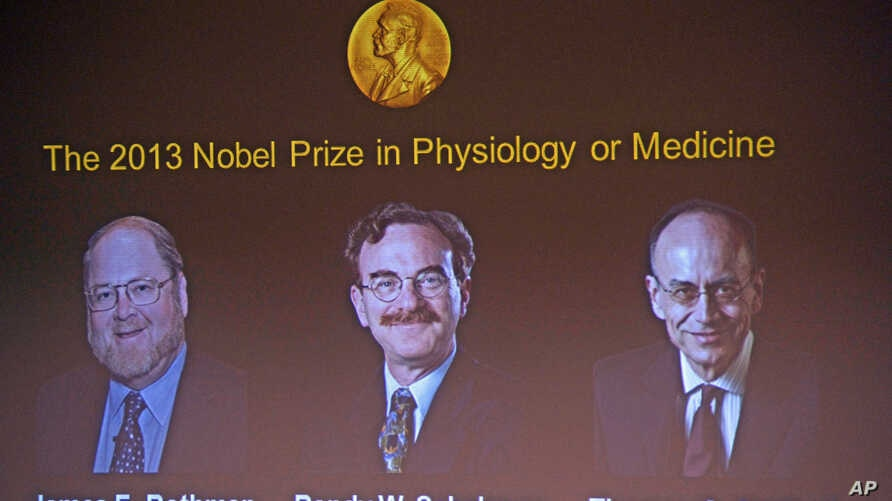 James Rothman and Randy Schekman, of the US,  and German-born researcher Thomas Suedhof  are projected on a screen, in Stockholm, Sweden after they were announced as the winners of the 2013 Nobel Prize in medicine, Oct. 7, 2013.