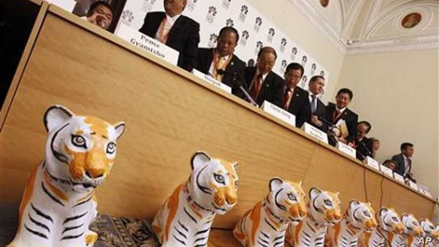 Ministers of Forestry and Natural Resources from tiger range countries leave a news conference at the International Tiger Forum at Mariinsky palace in St.Petersburg, Russia, 21 Nov 2010
