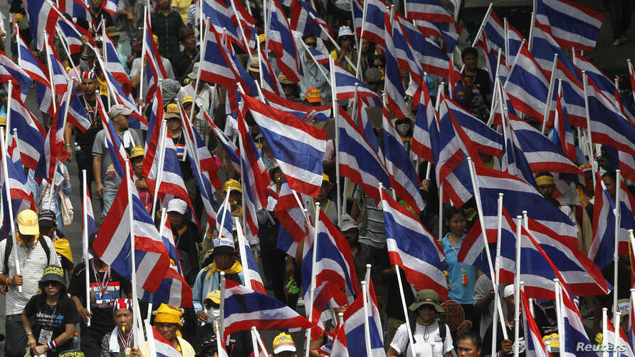 Protesters against the government-backed amnesty bill hold Thai national flags as they march in central Bangkok November 14, 2013.