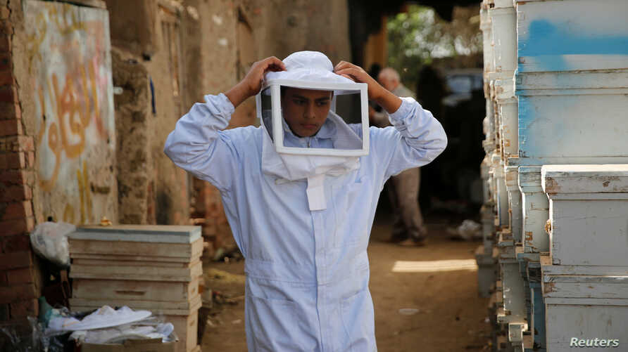 A beekeeper holds protective gear at his farm in Shibin El Kom, Menoufia province, northeast of Cairo, Egypt, Nov. 30, 2016.