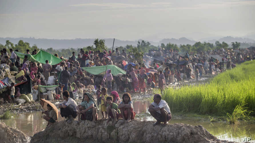 Newly arrived Rohingya Muslims, who crossed over from Myanmar into Bangladesh, rest in a field after spending a night in the open as they have been prevented from moving ahead towards refugee camps by Bangladesh border guard soldiers at Palong Khali,...