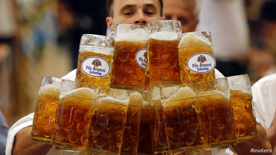 German Oliver Struempfl competes to set a new world record in carrying one liter beer mugs over a distance of 40 m (131 ft 3 in) in Abensberg September 7, 2014.