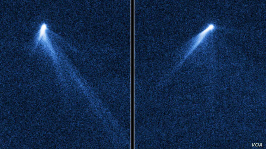 This NASA Hubble Space Telescope set of images from Sept. 10, 2013 reveals a never-before-seen set of six comet-like tails radiating from a body in the asteroid belt designated P/2013 P5. (NASA, ESA, D.Jewitt/UCLA)