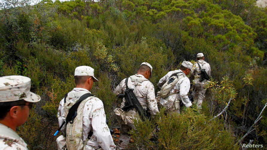 Soldiers take part in an operation to destroy a marijuana plantation at Sierra Juarez, in the municipality of Ensenada, Mexico July 16, 2018.