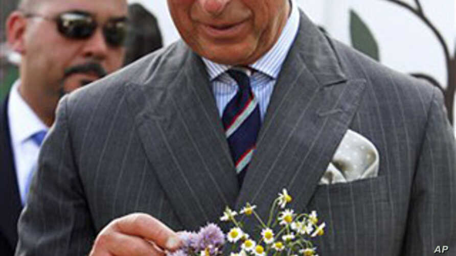 Britain's Prince Charles looks at flowers he received during a visit to Common Good City Farm in Washington, on Tuesday, May 3, 2011