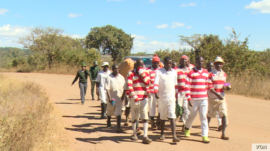 Prisoners at Chikurubi Maximum Security prison in Harare (03/06/2019) where the seven detained activists who are being held on treason charges, June 3, 2019. (C. Mavhunga/VOA)