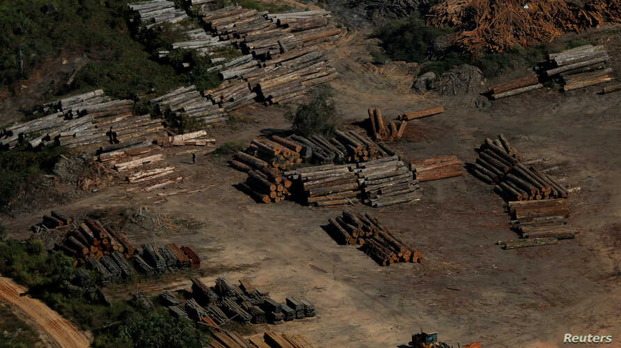 """FILE - Piles of wood are seen during """"Operation Green Wave"""" conducted by agents of the Brazilian Institute for the Environment and Renewable Natural Resources, or IBAMA, to combat illegal logging in Apui, in the southern region of the state of Amazonas, B"""