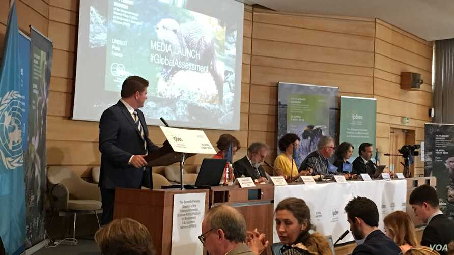 Officials at Paris gathering of scientists on Monday unveiled comprehensive, 1,800-page biodiversity report with warnings of unprecedented widespread extinction of various world's species.