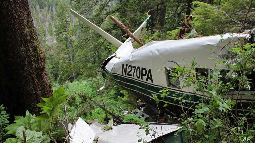 In this undated file photo, provided by the National Transportation Safety Board, the wreckage of a sightseeing plane that crashed about 25 miles from Ketchikan in southeast Alaska on Thursday, June 25, 2015.