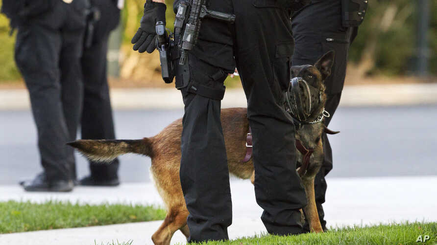 A Belgian Malinois dog, part of the Secret Service's K-9 unit used for security at the White House, greets members of the Secret Service police on the North Lawn of the White House, Oct. 24, 2014, in Washington.
