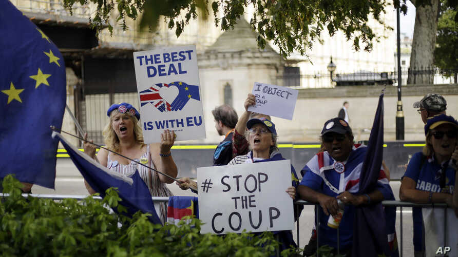 Brexit opponents wave flags and hold signs near the Houses of Parliament in central London, England, Aug. 28, 2019.