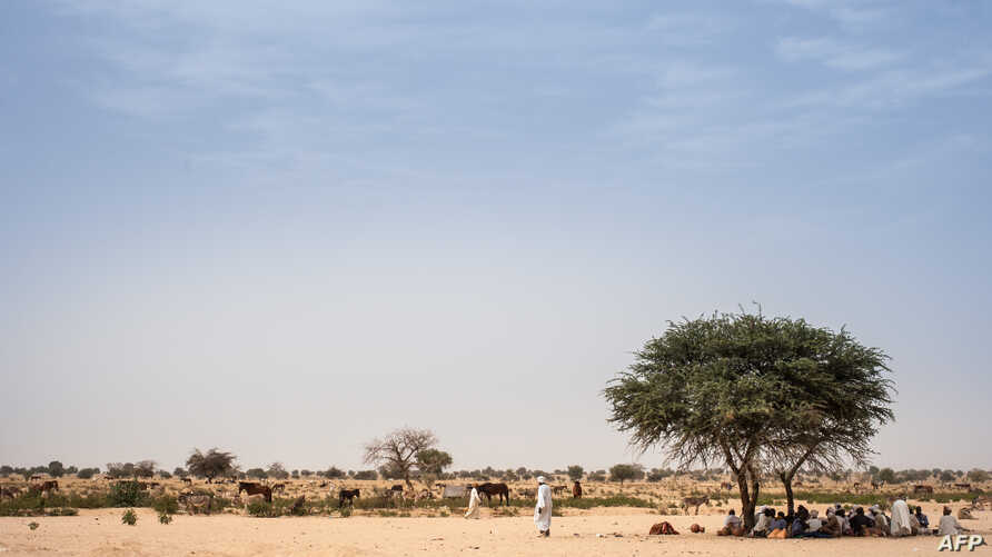 FILE - Farmers shelter under a mango tree to avoid the heat and sun in the eastern Chad region of Ouaddaï, March 25, 2019.