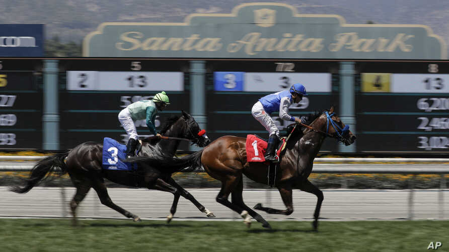 FILE - Eddie Haskell, right, with jockey Kent Desormeaux aboard, wins a race at the Santa Anita Park race track in Arcadia, Calif., June 23, 2019. A 3-year-old colt was euthanized Saturday, the 32nd horse to die at the track since December.