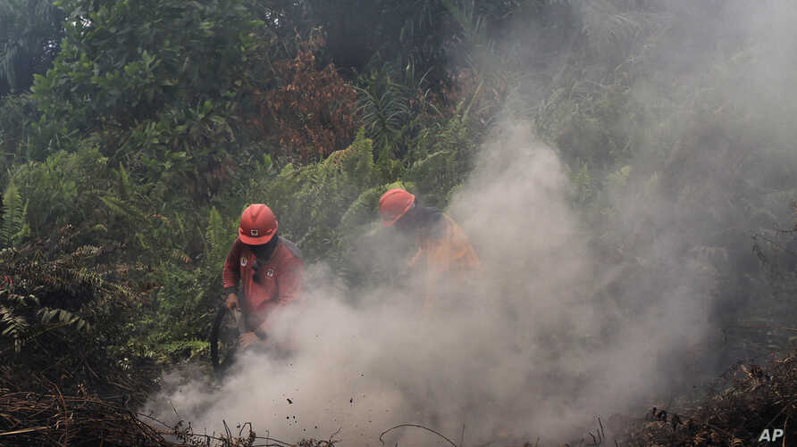 Firefighters try to extinguish brush fires in Pekanbaru, Riau province, Indonesia, Sept. 14, 2019. Nearly every year, Indonesian forest fires spread health-damaging haze across the country and into neighboring Malaysia and Singapore.