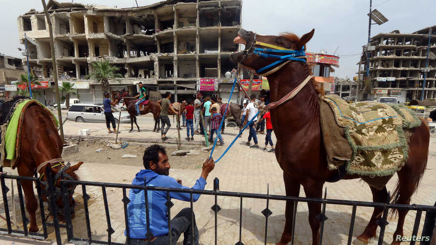 A man holds a horse near damaged buildings during the first day of the Muslim holiday of Eid al-Fitr in Raqqa, Syria, June 5, 2019.