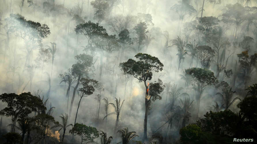Smoke billows during a fire in an area of the Amazon rainforest near Porto Velho, Rondonia State, Brazil, Sept. 10, 2019.