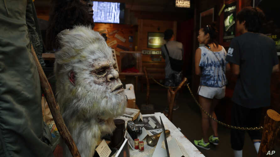 A Bigfoot mask and other items donated by the family of Yeti researcher Tom Slick on display at Expedition: Bigfoot! The Sasquatch Museum in Cherry Log, Georgia, Aug. 8, 2019.