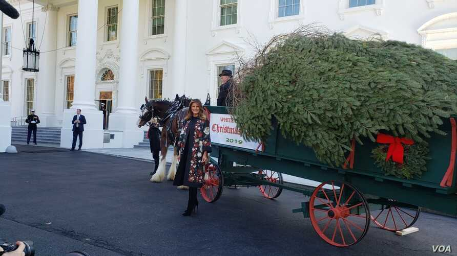 First Lady Melania Trump poses for a photo in front of the White House Christmas tree, after it arrives at the White House, Nov. 25