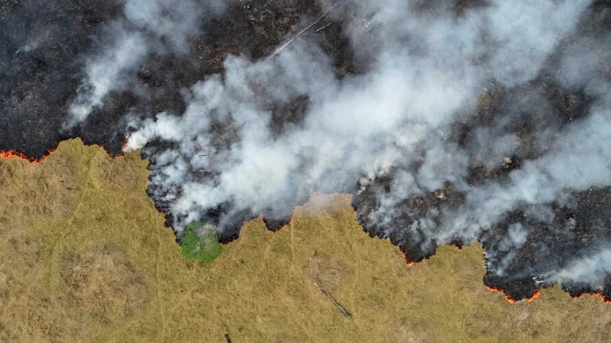 FILE PHOTO: Billows of smoke rise over a deforested plot of the Amazon jungle in Porto Velho, Rondonia State, Brazil, August 24…