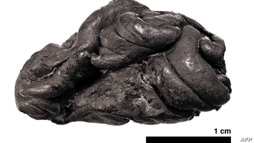 """A handout photo provided by the University of Copenhagen Dec. 17, 2019, shows a 5,700-year-old type of """"chewing gum"""" made from birch pitch found during archaeological excavations at Syltholm, southern Denmark."""