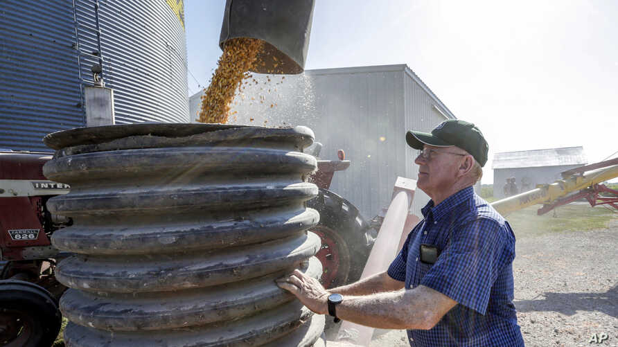 FILE - A farmer checks on the operation of an auger transferring corn on his farm in Pawnee City, Nebraska, July 12, 2018.