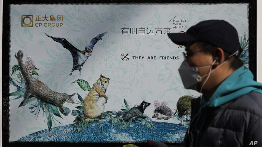 FILE - A man wearing a protective face mask walks by a government poster promoting the protection of wildlife animals following the coronavirus outbreak, in Beijing, China, March 11, 2020. The poster is viewed by critics as propagandistic in nature.