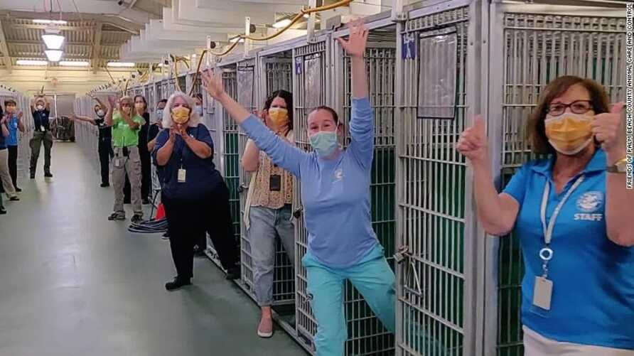 FILE - Employees and volunteers could be seen cheering and clapping at the sight of the empty kennel at Friends of Palm Beach County Animal Care and Control in West Palm Beach, Florida. (Photo credit - Palm Beach County Animal Care and Control)