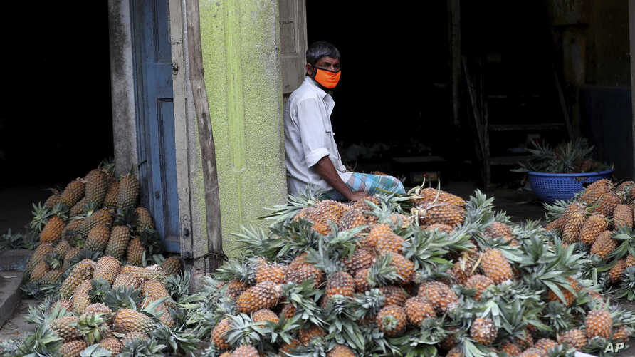 An Indian trader wearing a face mask waits for buyers next to a pile of pineapples at a wholesale fruit market in Bengaluru, India, Saturday, May 30, 2020.