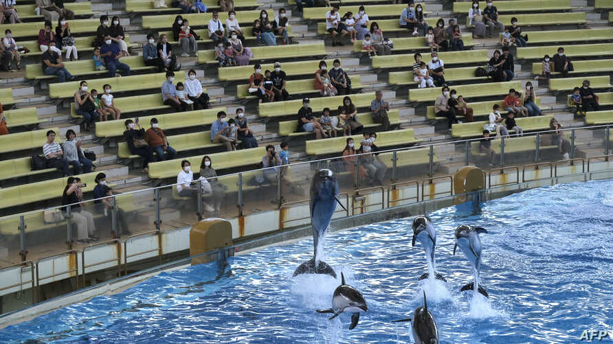 Visitors watch a dolphin show at the Hakkeijima Sea Paradise theme park, which was reopened on June 1 after about two months,…