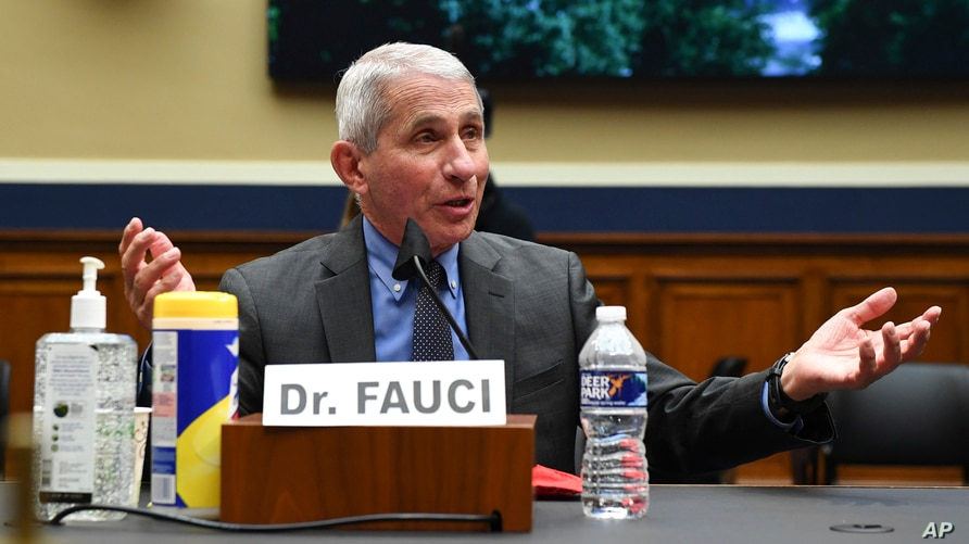 Director of the National Institute of Allergy and Infectious Diseases Dr. Anthony Faucitestifies before a House Committee on…