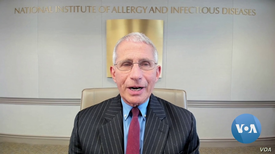 VOA's Russian service discusses the pandemic with Dr. Anthony Fauci, the director of the National Institute of Allergy and Infectious Disease, June 11, 2020.